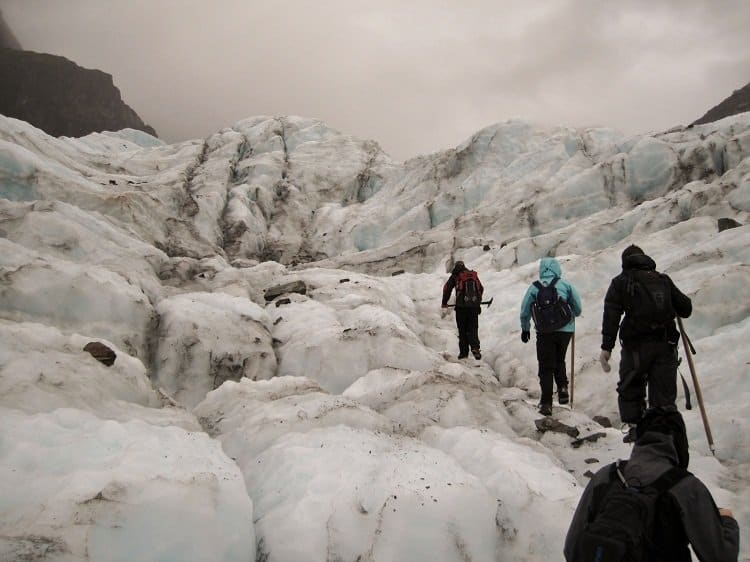 fox hike Franz Josef or Fox Glacier: Which Glacier Hike Is Better?
