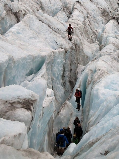 franz group Franz Josef or Fox Glacier: Which Glacier Hike Is Better?