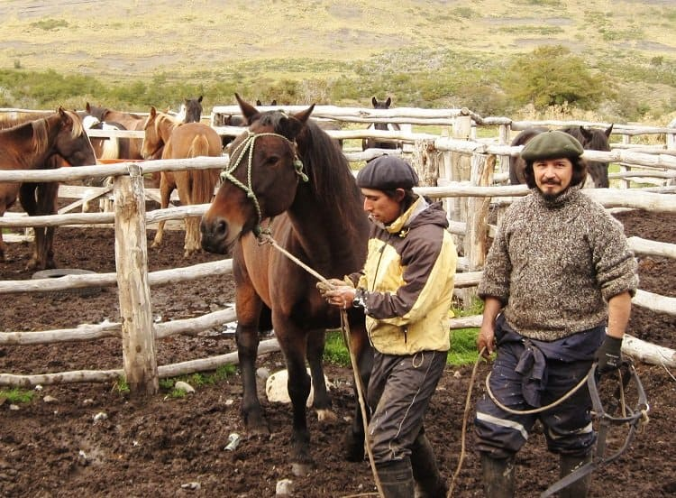 gauchos chilenos Patagonias Gauchos: The Cowboy Way (Photo Essay)