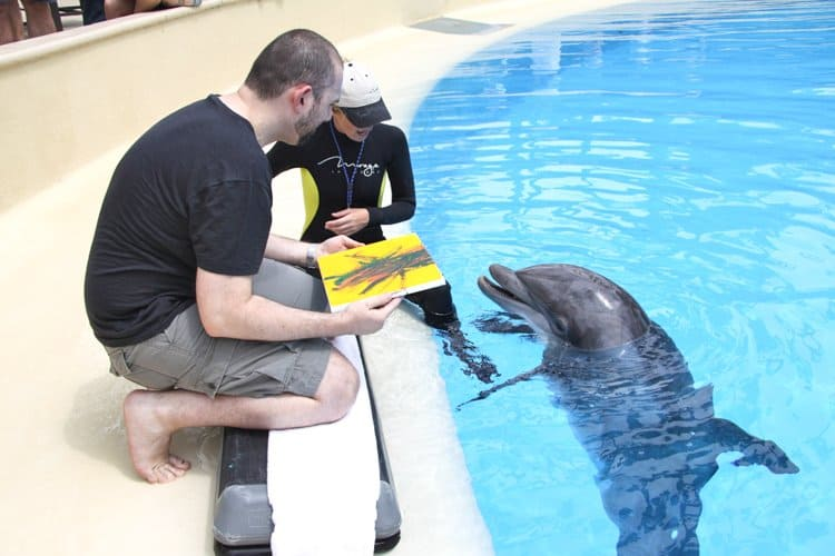 painting with dolphins 13 Underwater Life In the Desert: Las Vegas