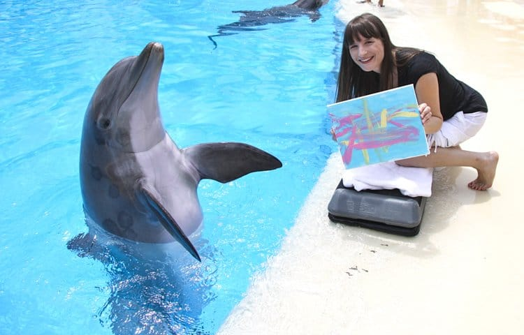 painting with dolphins las vegas