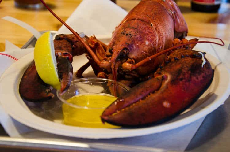 maine food 30 …But Maine Lobster Is Amazing Too