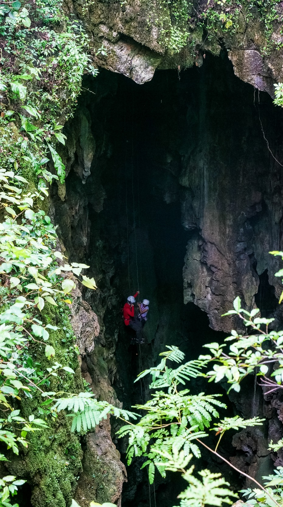 Entrance of the cave